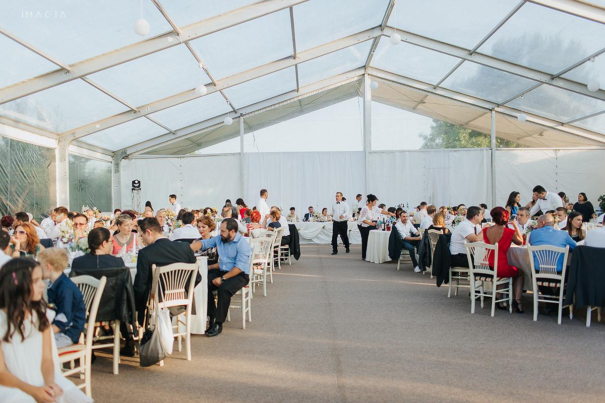 Nunta la cort in Baia Mare